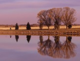 1...2....3....Bondurant Pond in Winter by Kristie Burns NEW